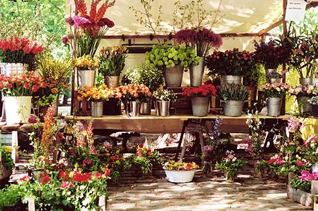 Der Blumenstand
